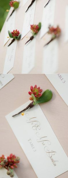 succulent wedding escort cards, really like this.