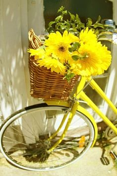 yellow flowers in a basket on a yellow bike