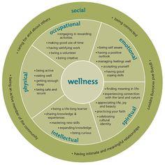 holistic model of wellnessdiagram_420