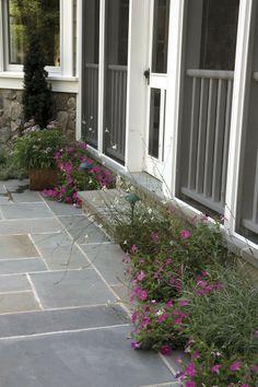 Screened porch/door; blue stone patio