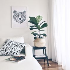 Living area. featuring @montytribe big bear print