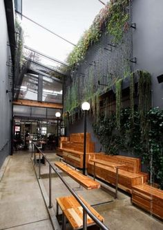 Plants Climbing Wall 45 New Ideas Coffee Shop Bar, Coffee Shop Design, Rooftop Restaurant, Restaurant Design, Cafe Plants, Cafe Exterior, Garden Coffee, Outdoor Cafe, Cafe Shop