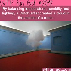 WTF Fun Facts is updated daily with interesting & funny random facts. We post about health, celebs/people, places, animals, history information and much more. New facts all day - every day! Wtf Fun Facts, True Facts, Funny Facts, Random Facts, Random Stuff, Random Things, Odd Facts, The More You Know, Good To Know