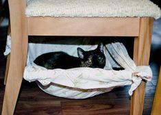 Paparazzi shot of Mixi / DIY cat bed hidden under the dining room chair.Perhaps if they are under the chair, they IGNORE the table food:) Diy Cat Hammock, Diy Cat Bed, Diy Bed, Cat Gym, Living With Cats, Fancy Cats, Cat Furniture, Pet Beds, Diy Stuffed Animals