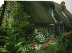 What can I say I am a sucker for The English Cottage!