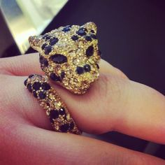 wish i have a cat ring