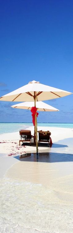 Romantic Maldives (Indian Ocean).    ASPEN CREEK TRAVEL - karen@aspencreektravel.com.
