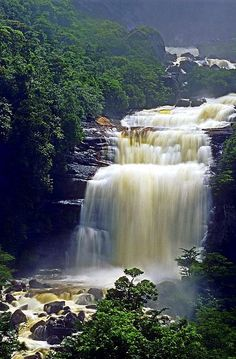 The Base of Angel Falls in Canaima National Park. Visit fineartamerica.com