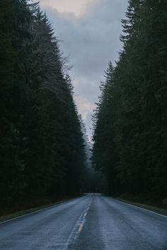 brandonscottherrell:  Take many trips. Stop often.