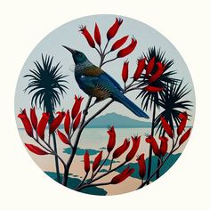 Native Birds of NZ Canvas Art Print - Ready to Hang: New Zealand Fine Prints Canvas Art Prints, Fine Art Prints, Tui Bird, Peacock Wall Art, New Zealand Art, Nz Art, Pottery Studio, Stone Art, Fine Art Paper