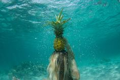 Underwater Pineapple