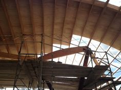 Check Out the Crazy Canopy at Connie & Ted's -