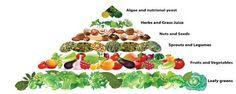 vegan food pyramid via Twitter