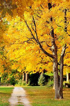 Milwaukee, Wisconsin in the fall