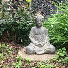 Buddha is feeling at home in the gorgeous garden the previous owner left us. Zen Rock Garden, Lilies, Hydrangea, Garden Sculpture, Buddha, Sweet Home, Statue, Feelings, Outdoor Decor