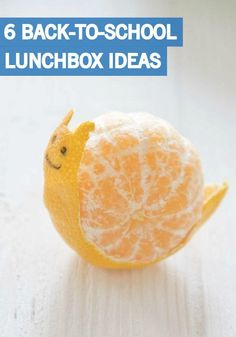Now is the time to start planning for the back-to-school season! Try out all of these adorable lunch box ideas for your kids this year. Your little ones are sure to love the new additions to their lunches.