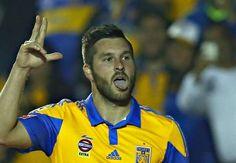 Tigres reassert position as kings of the Liga MX jungle