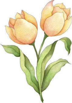 Imagenes de flores coloreadas en diseños para imprimir con colores delicados y suaves. Descarga y guarda tu imagen de flor coloreada para i...