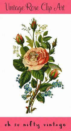 Royalty Free Images Clip Art - Valentine Rose - http://vintagegraphics.ohsonifty.com/royalty-free-images-clip-art-valentine-rose/