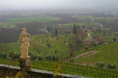 Memorable vineyards in Friuli.  This is a view from the Rosazzo Abbey.  Spectacular views, even on a rainy and cloudy day.