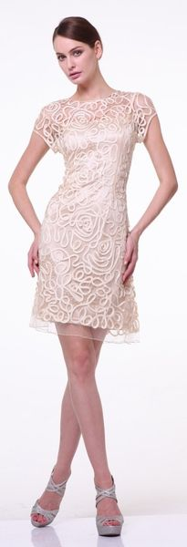 Champagne knee length lace semi formal dress by Cinderella Divine This short knee length lace gown features short sleeves and a modest illusion neckline. Semi Formal Dresses, Short Sleeve Dresses, Champagne Dress, Wedding Attire, Dress Wedding, Luxury Dress, Knee Length Dresses, Stylish Dresses, Gowns