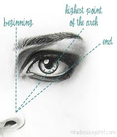 How To Shape Your Eyebrows no wonder I'm confused! They all say to do it differently!