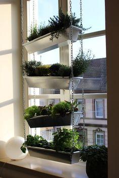 vertikaler Garten für die Fensterbank