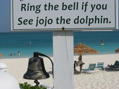Ring the bell if you see jojo the dolphin! So many fun things to do and see while in Turks,