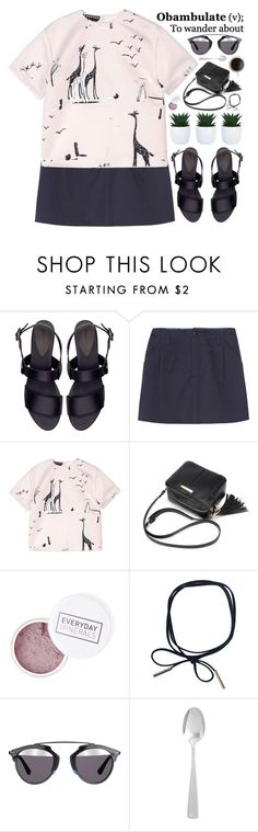 """""""just wandering"""" by evangeline-lily ❤ liked on Polyvore featuring Zara, A.P.C., Rochas, Christian Dior, Pier 1 Imports, Dior, zara, apc and Fall2016"""