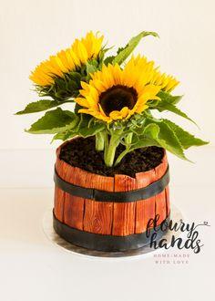 Sunflower in a pot fondant cake