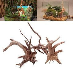 aquarium driftwood  1PC driftwood for fish tank driftwood/ #driftwood  #driftwoodart  #bonsai  #aquariums #bonsaidriftwood #aquascaping
