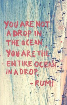 you are the entire ocean in a drop...