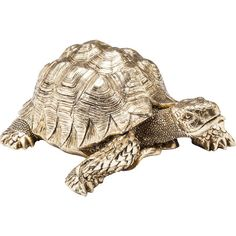A quirky character, Tarantino the Tortoise is the perfect family pet. Turtle Figurines, Small Figurines, Bedroom Accessories, Decorative Accessories, Clean My Space, Clearance Rugs, Living Room Shelves, Living Room Update, Kare Design
