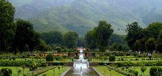 Top Five Honeymoon Destinations in India
