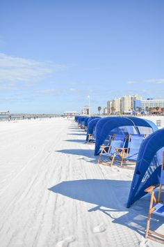 Welcome to the official website for the City of Clearwater, bright and beautiful - bay to beach. Places Ive Been, Places To Go, Clearwater Florida, Beautiful Places, City, Beach, Travel, Viajes, The Beach