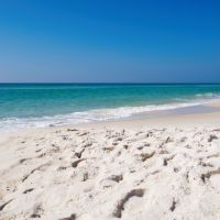 90 Things to Do with Kids in Rosemary Beach,FL | TripBuzz