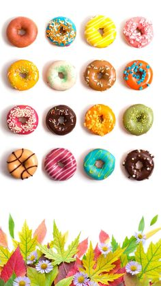 Doughnut Frames iPhone 5 wallpaper - Go to website for iPhone 4 version