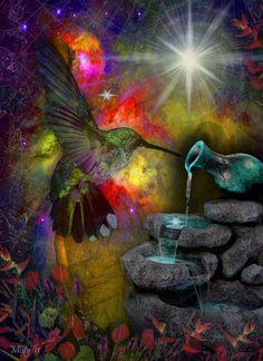Celestial hummingbird...amazing.