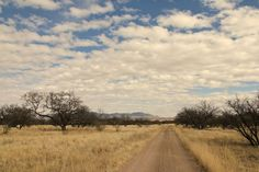 Empire Ranch is only an hour from Tucson, north of Sonoita and truly a 100 years from town.