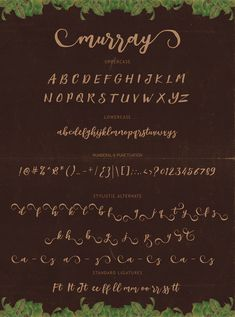 Anthoni Signature | From Our Designers | Signature fonts