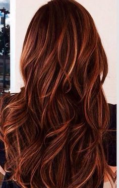 Rich red toned highlights on dark hair
