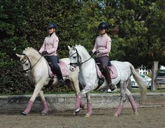 Equestrian Outfits, Equestrian Style, Equestrian Fashion, Buy A Horse, Horse Riding Clothes, Horse Fashion, Pretty Horses, Horse Tack, Matching Outfits