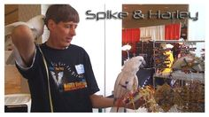 Come visit TASC with Spike & Harley at the Pet Expo in this weekend in Arlington Heights, IL and get a coupon for the Midwest Bird Expo. Visit Booth #348 main level. See you there!