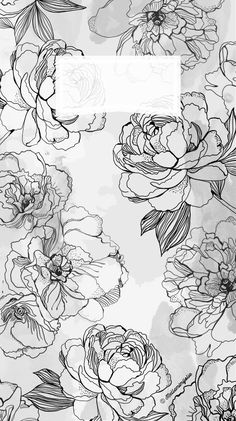 #iphone #wallpaper #background #flowers #black #and #white
