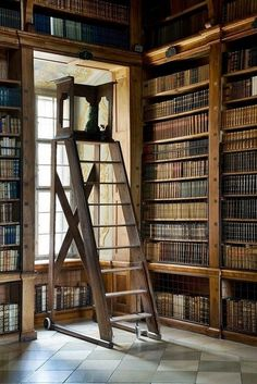 ❣ Library ladder!