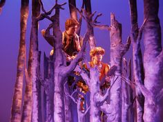Image result for into the woods set