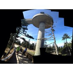 Clingman's Dome. It's the highest point in the Great Smoky Mountains National Park. I was also nearly some black bear's lunch not too far from this spot.