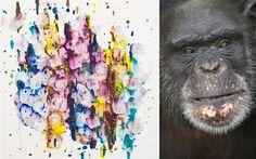 Brent win's $10,000 chimpanzee art prize