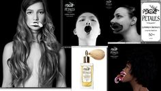 Petal Portraits a Multi Sensory Exhibition: Stephen Dirkes of Euphorium Brooklyn and Tal Shpantzer + Pétales  Perfume
