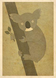 Mr. Koala